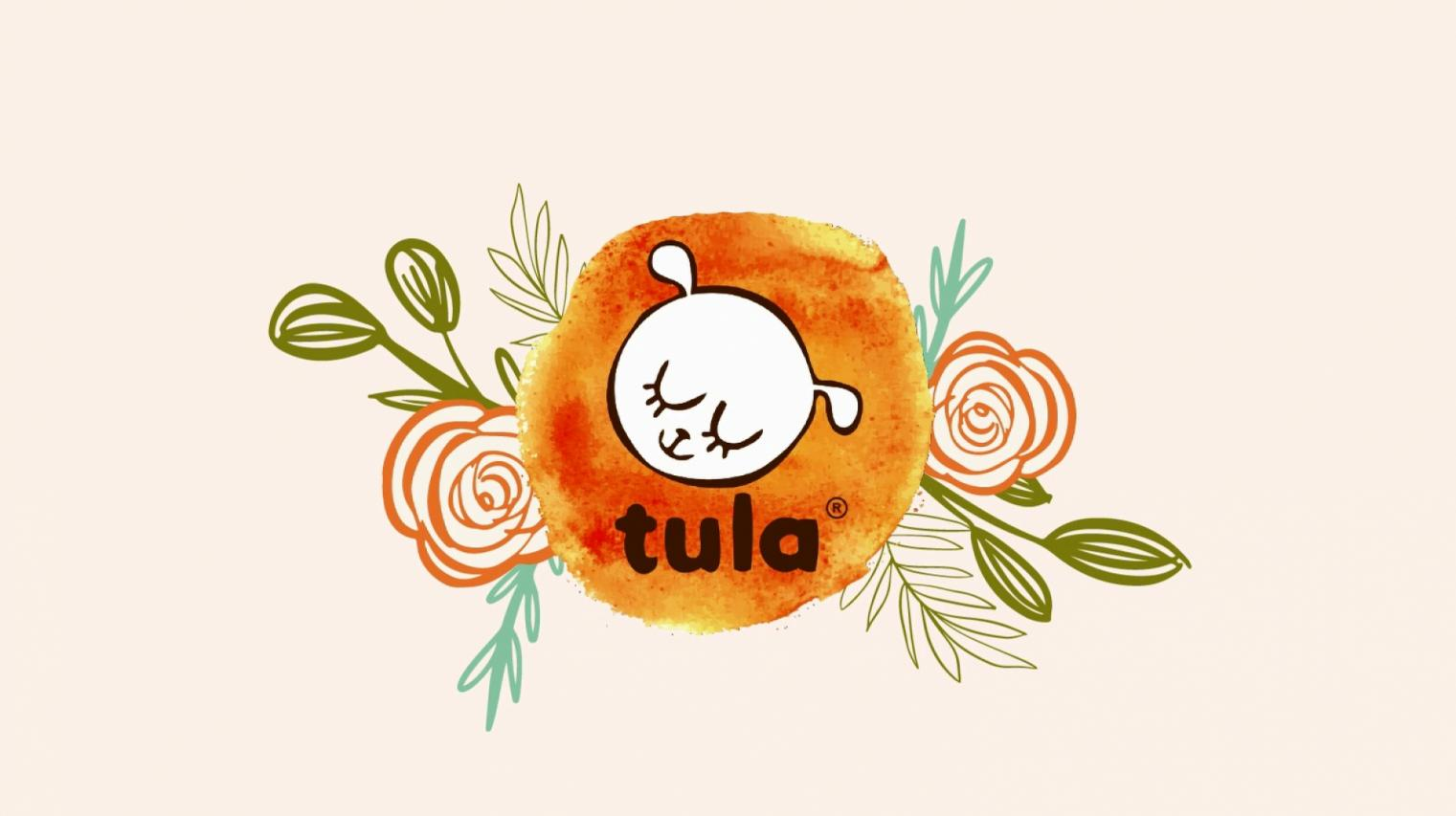 Baby Tula Free-to-Grow Baby Carriers