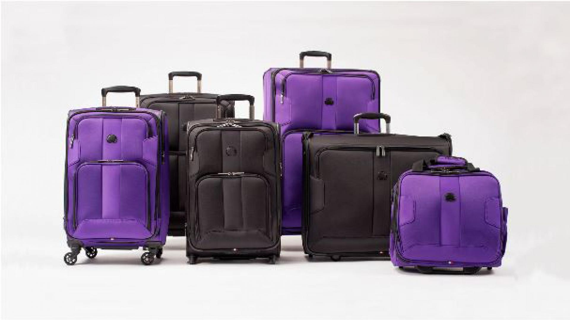 Delsey Paris Sky Max Luggage Collection