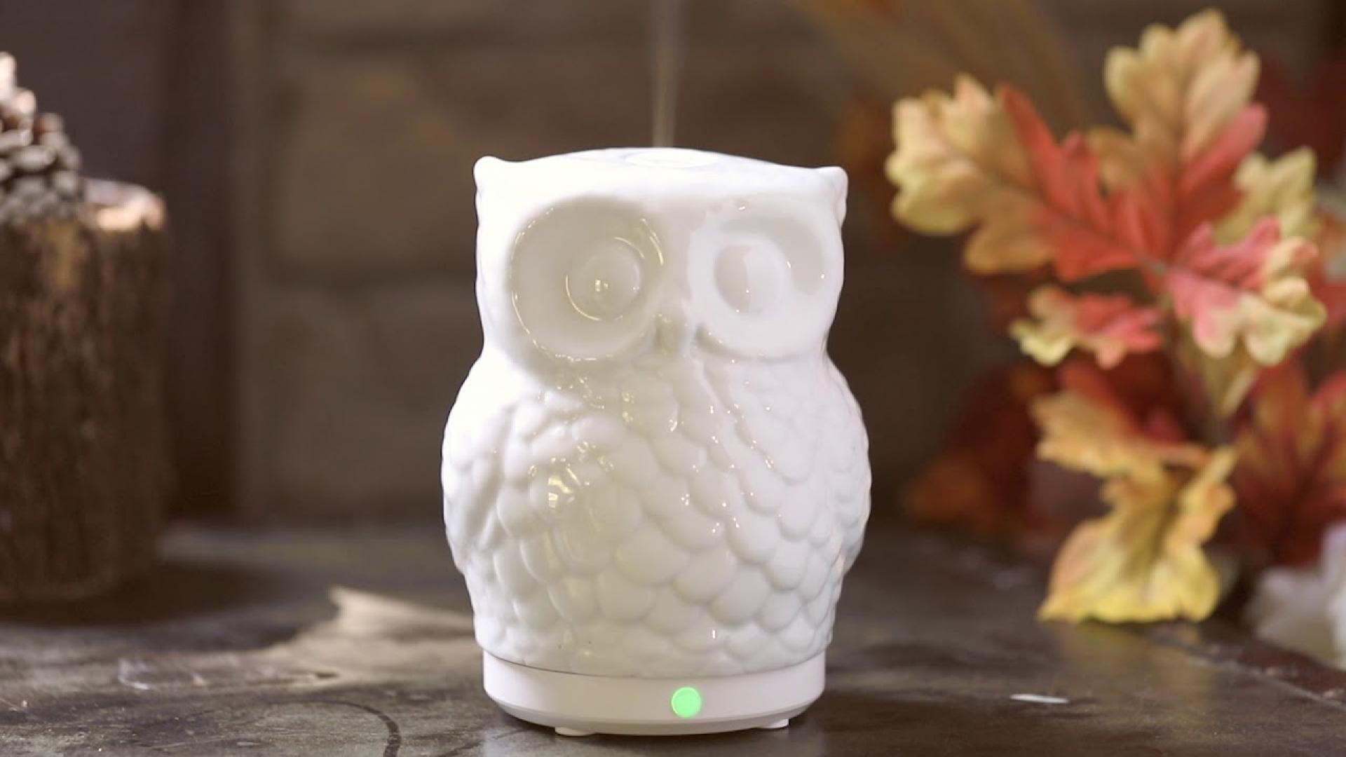 SpaRoom Owl Ceramic Ultrasonic Essential Oil Diffuser