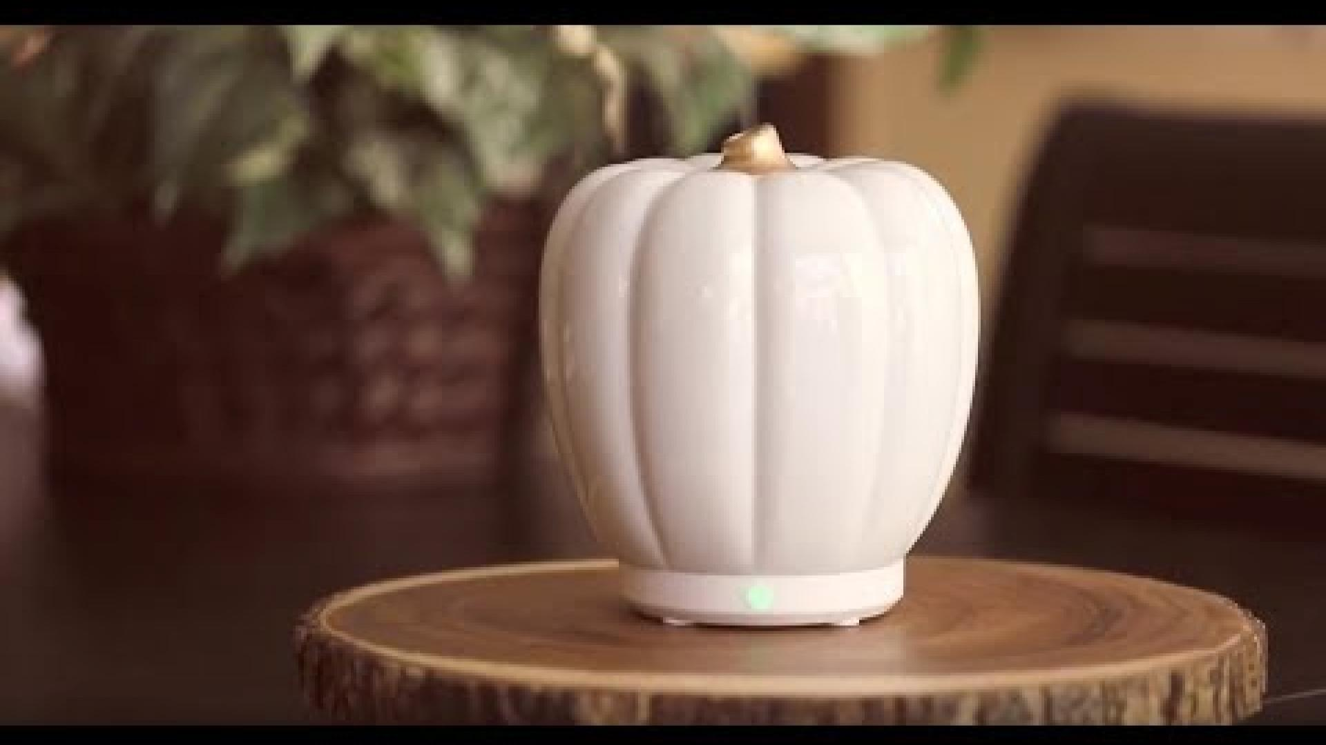 SpaRoom Pumpkin Ceramic Ultrasonic Essential Oil Diffuser
